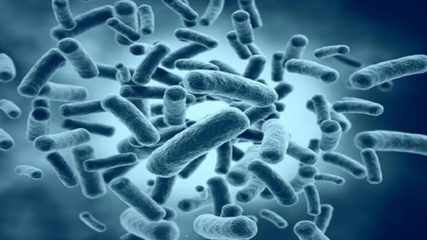 Bacteria high resolution 3d render